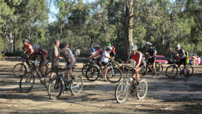 woodlands-mtbo
